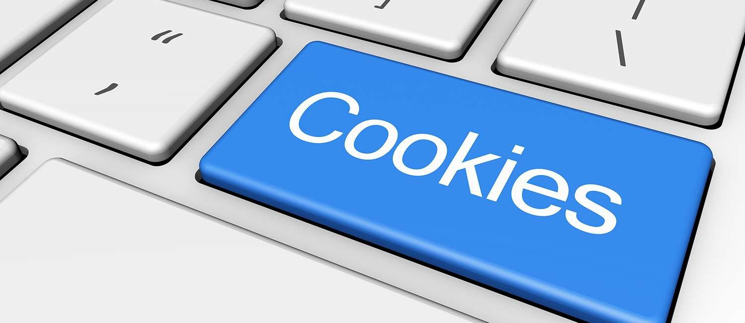 WEBSITE COOKIE POLICY FOR LOCKHART INN